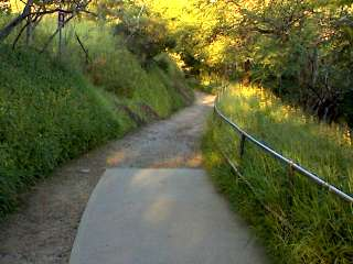 Paved and Unpaved Path