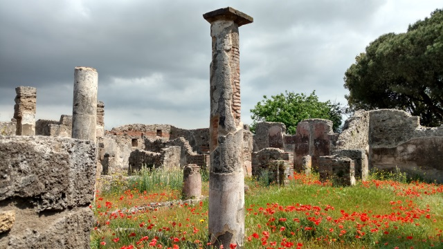 Pompeii Columns and Flowers