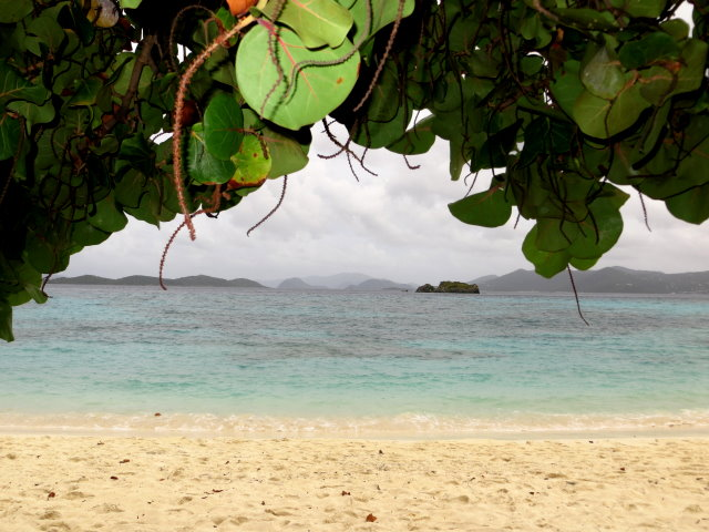 Under a Shade Tree on Sapphire Beach